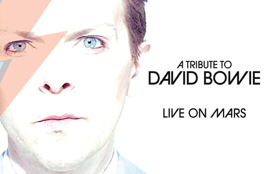 `Live on Mars: A Tribute to David Bowie` (Image provided by Artpark & Company)