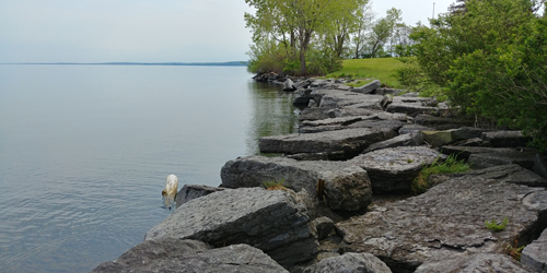 This rock rip-rap wall was installed to prevent shoreline erosion along Lake Ontario. Incorporating additional nature-based methods would improve stability of the wall to withstand storm waves. (Photo: New York Sea Grant/Roy Widrig)