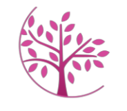 The Breast Cancer Network of WNY