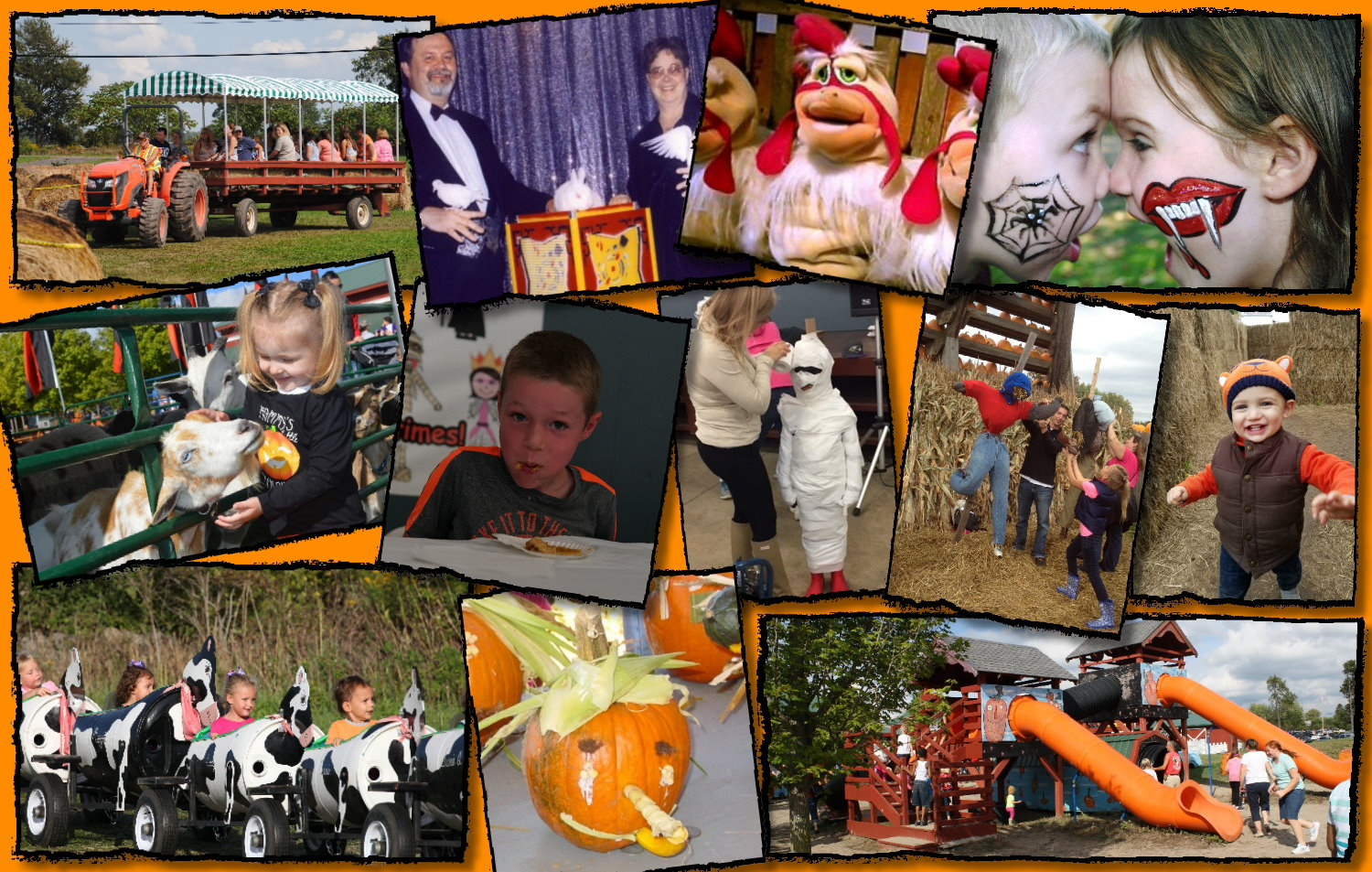 Family fun can be found at the Great Pumpkin Farm in Clarence. (Photos courtesy of Great Pumpkin Farm)