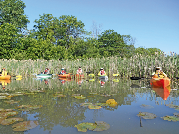 Participants from the Golden Age Center took a kayak trip on the Niagara River, leaving from the East River Marsh and heading to Motor Island.