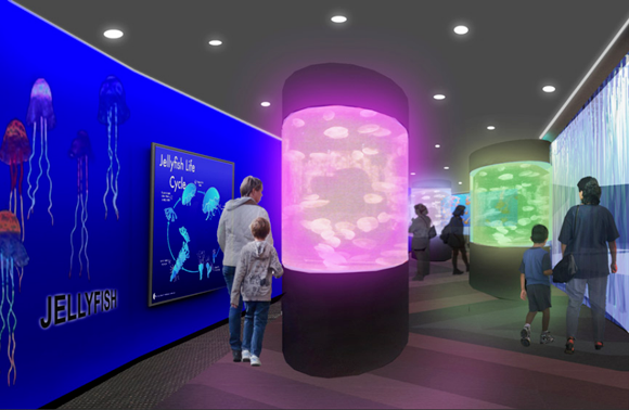 An artist's rendering of the `Aliens of the Sea` exhibit at the Aquarium of Niagara.
