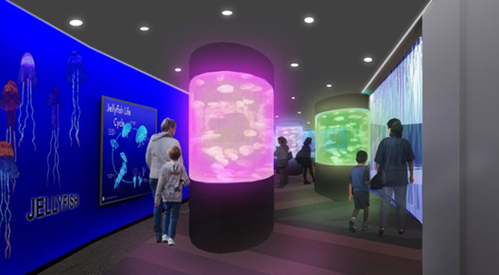 An artist's rendering of the new display set to debut at the Aquarium of Niagara.