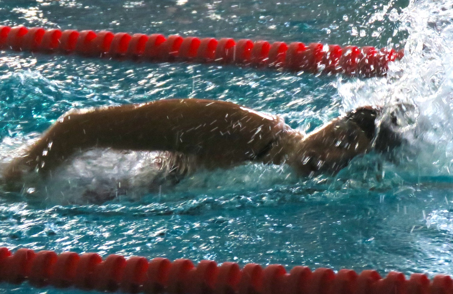 Danielle Carlson swims during a meet versus Lewiston-Porter last Friday. Carlson won the 200-yard freestyle with a time of 2:01.07, the 100-yard freestyle with a time of 55.05 and was part of the 200-yard freestyle relay team, which took first place with a time of 1:48.34. (Photo by David Yarger)