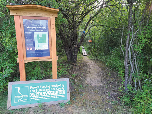 A trail through the Margery Gallogly Nature Sanctuary is part of the trail system, soon to be expanded, that could bring more bikers and hikers to Grand Island for ecotourism.