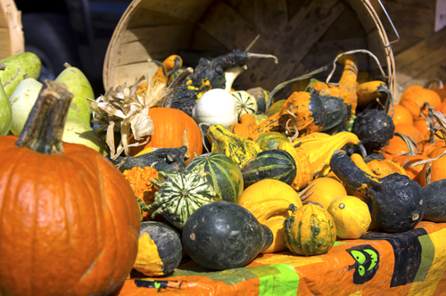Lewiston Harvest Festival (File photo)