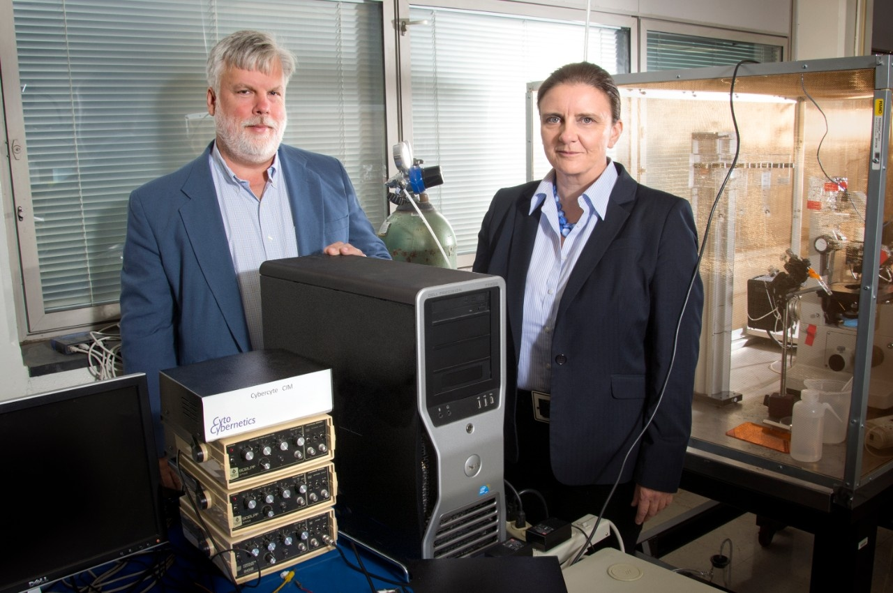 University at Buffalo faculty members Randall Rasmusson, left, and Glenna Bett are co-founders of Cytocybernetics. (Credit: Sandra Kicman / University at Buffalo)