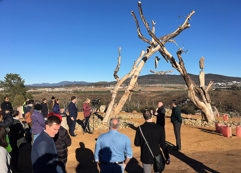 Project partners gathered to mark the formal dedication of `Life Support` on June 18 in Australia. The centerpiece is a salvaged 400-year-old yellow box tree lined with bird shelters and bat boxes. (Photo courtesy of Ashley Eriksmoen/UB)