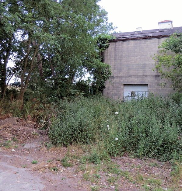 Pictured is the Ellicott Development property to be considered for environmental remediation.