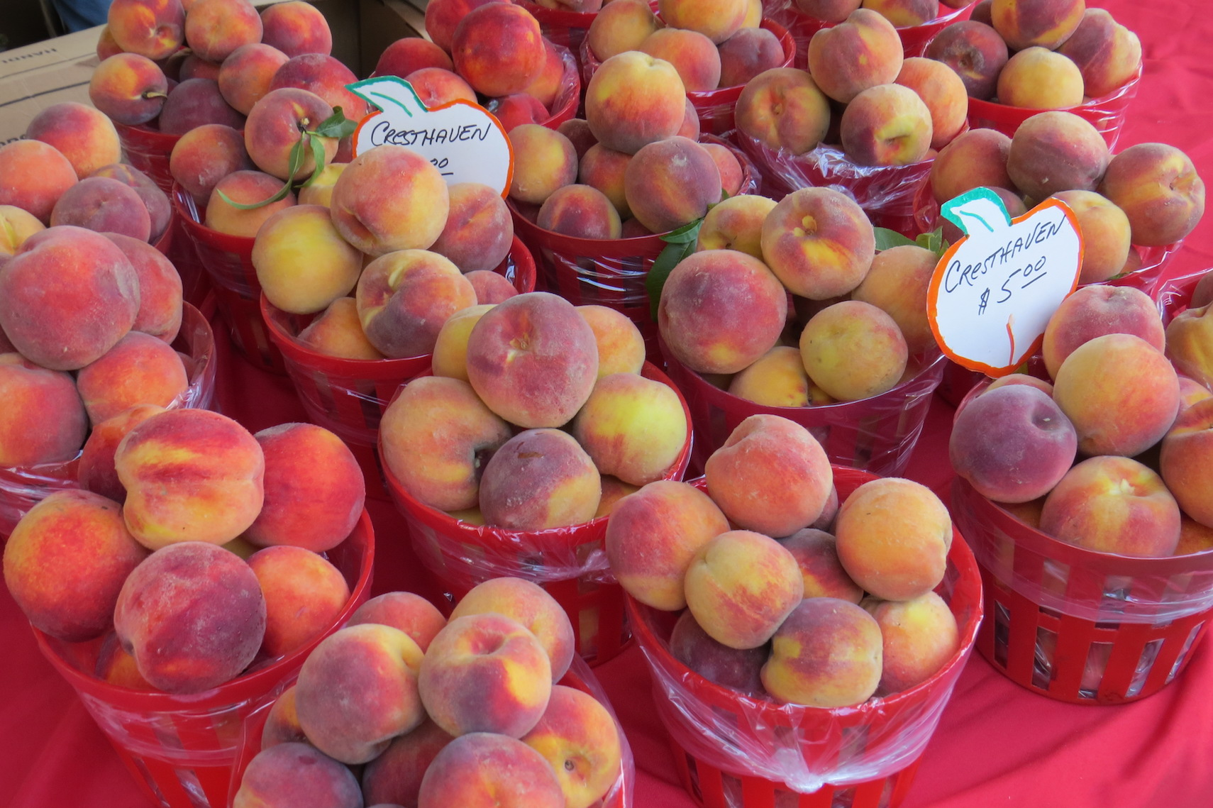 Fresh peaches from Sanger Farms.