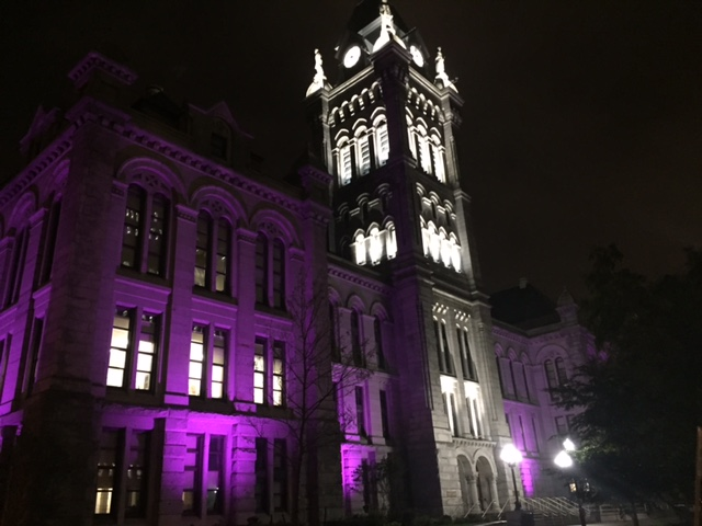 Erie County Hall in purple (Submitted photo)