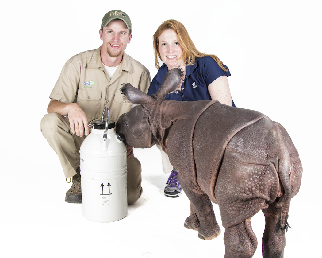 The Buffalo Zoo's head rhino keeper, Joe Hauser, stands with Dr. Monica Stoops, reproductive physiologist at the Cincinnati Zoo's CREW, and Monica.