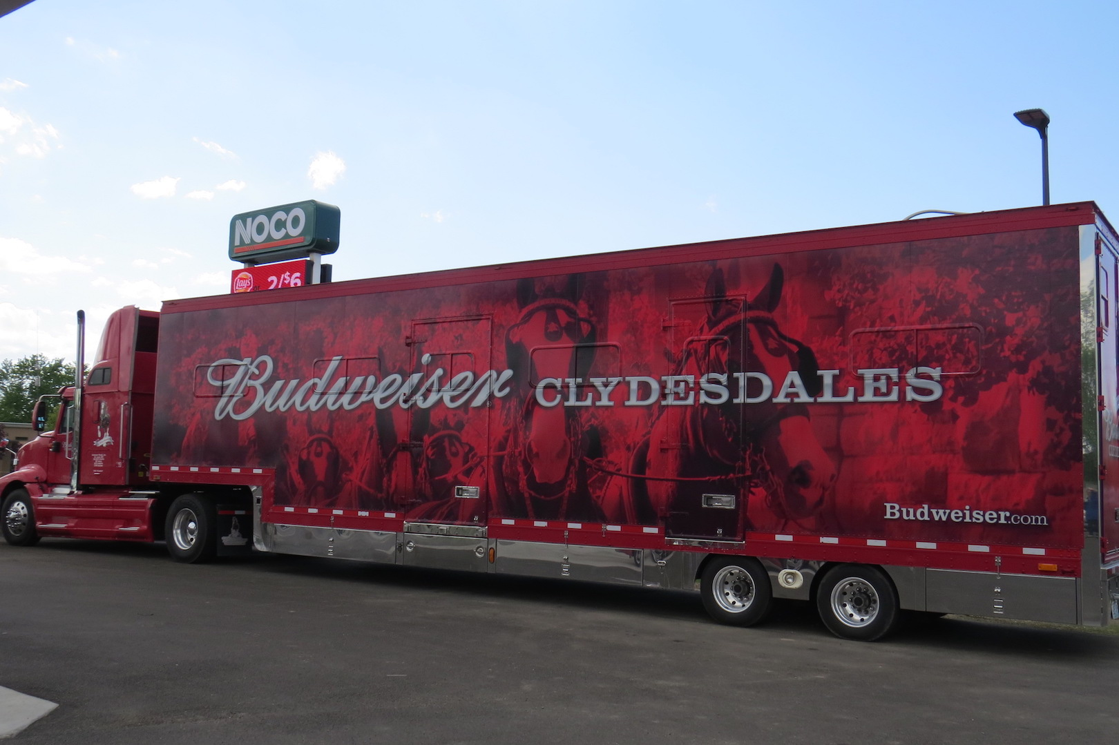 Clydesdale casino