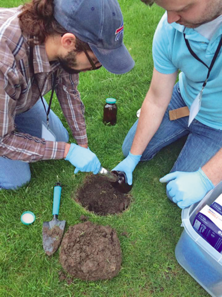 Grand island soils to be tested for pollutants for Soil testing