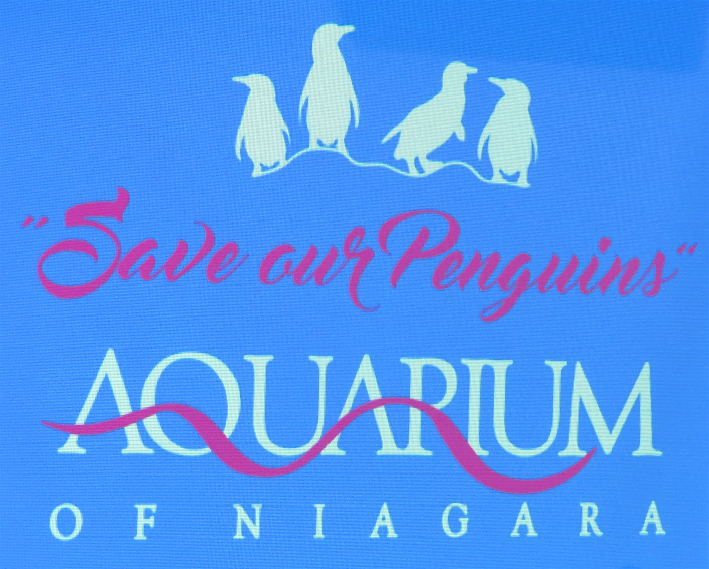 """Save our Penguins"""