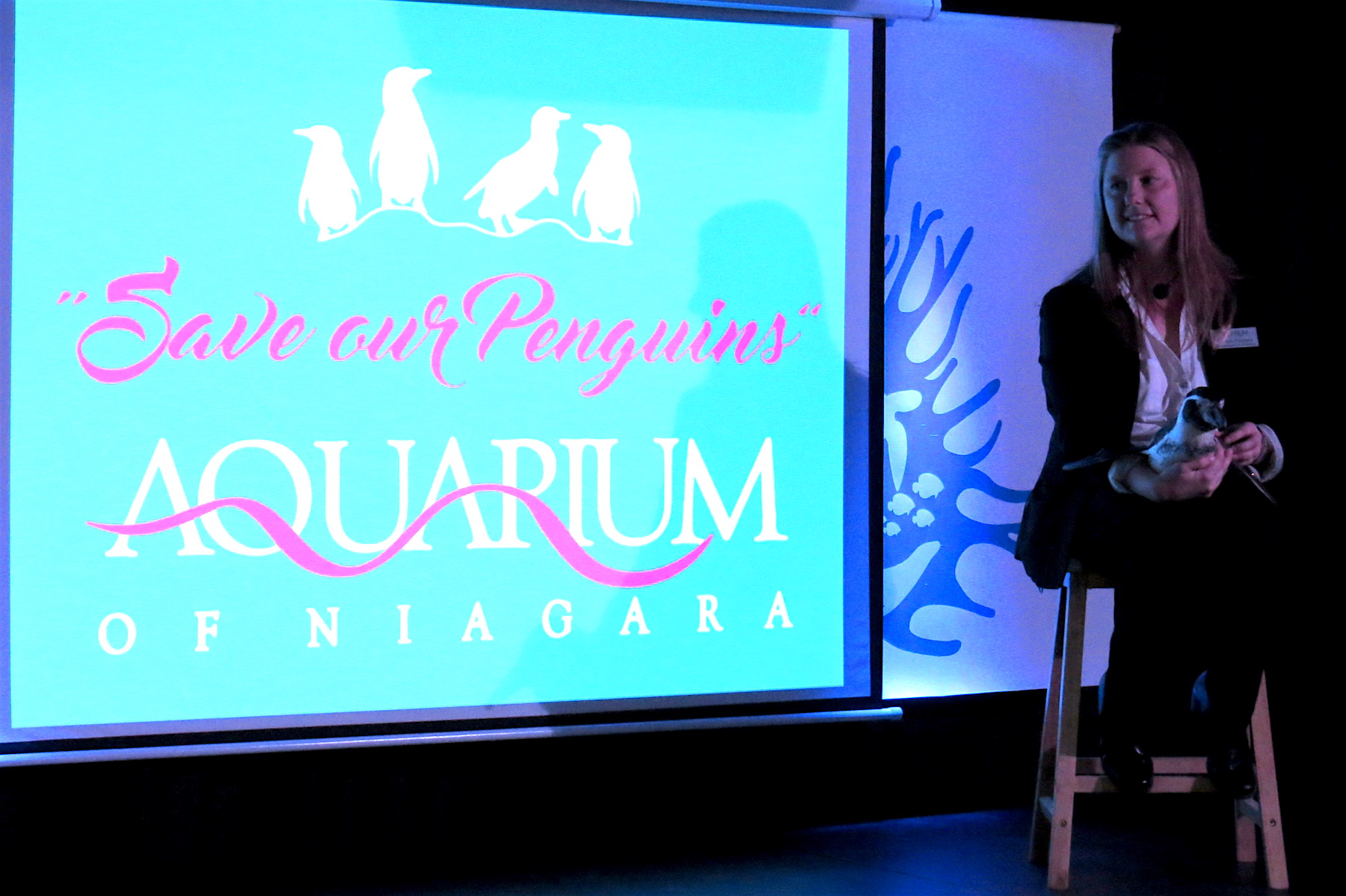 Pictured, Michele Paterson introduces 28-year-old `penguin princess` Opus to Aquarium of Niagara supporters, board members and reporters.