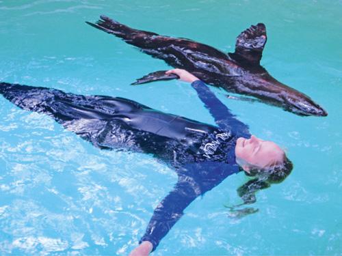 Aquarium Membership Member Or Child Of Named Member