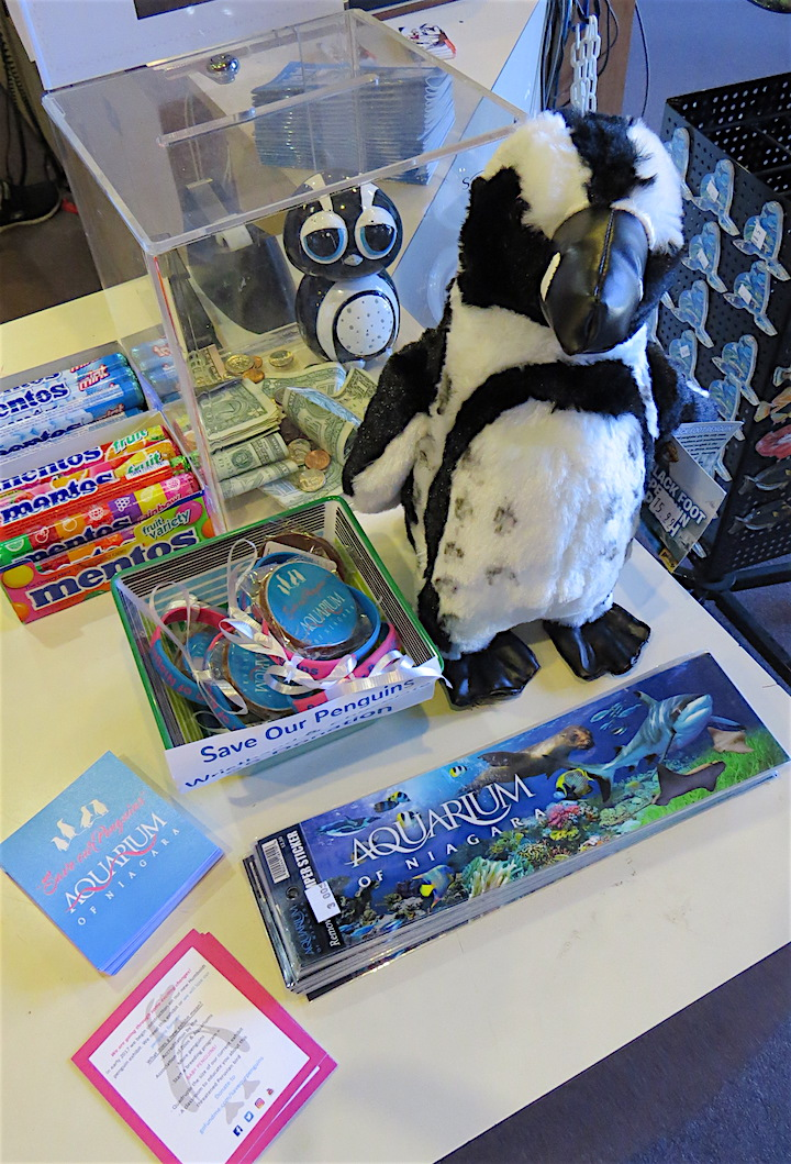 Penguin items for sale.