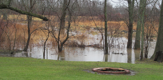 One argument residents have is that flooding isn't the result of 100- or 500-year storms, but regular rainfall. Pictured is a natural retention pond behind the DiBartolomeo household on Lemke Drive, taken Jan. 3, after the previous day's rainfall. (photo by Debbie DiBartolomeo)