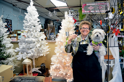 Suzanne Todaro, owner of Gleam and Glimmer Stained Glass Studio, holds a handmade stained glass snowflake, as well as her pet dog, Desi.