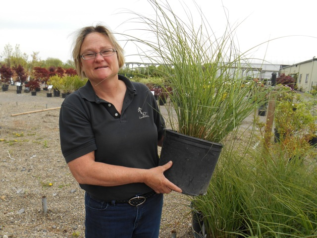 Sue Harbison, the A-1 LandCare nursery manager.