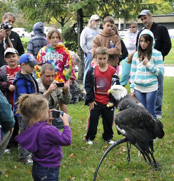 Make eye contact with your favorite feathered friends at the New York Power Authority's Wildlife Festival, Saturday and Sunday, Sept. 27-28 at the Power Vista, the Niagara Power Project's visitors center in Lewiston.