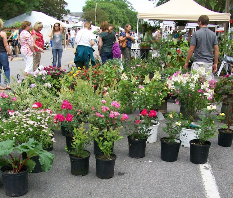 The Lewiston GardenFest is June 23-24. (file photo)