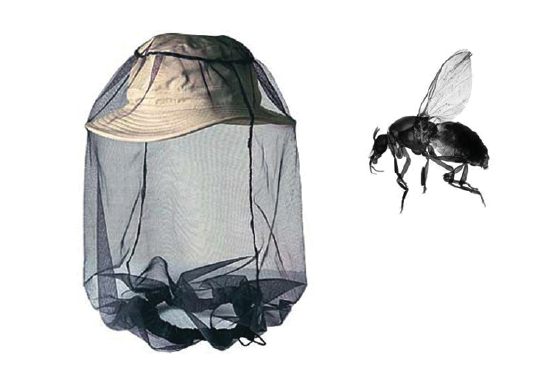 The dreaded black fly. A head net should be worn with a wide brim hat as shown, to keep the net away from your skin.