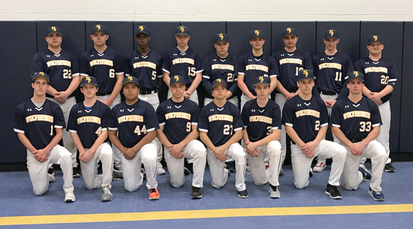 The 2017 Niagara Falls High School baseball team.